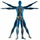 The Benefits You Can Get from Physical Therapy
