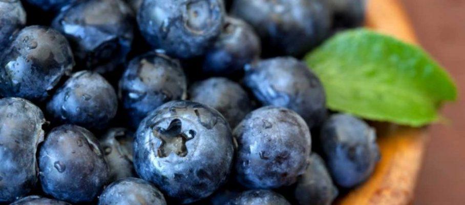 blueberries-antioxidants-acne